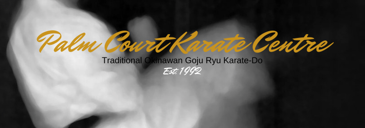 Palm court karate logo
